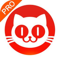 猫眼专业版下载