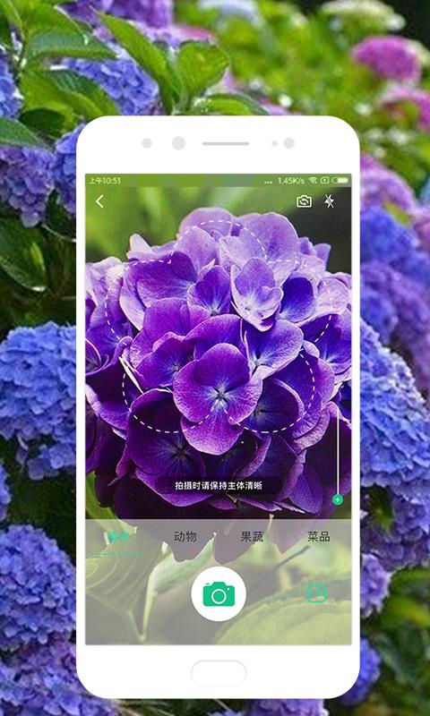 识物app安卓版下载