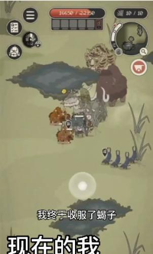 动物森林游戏破解版手机版最新