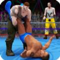2D摔角大赛游戏下载