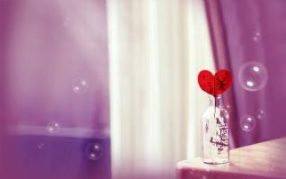 瓶中的心xp主题