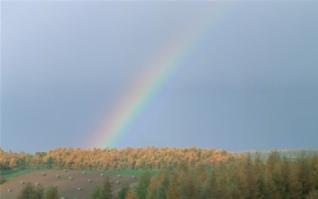 草原彩虹图片电脑壁纸