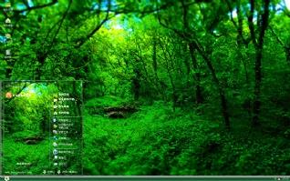 绿色护眼神秘森林xp主题