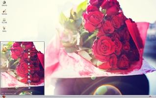 玫瑰的诱惑唯美xp主题