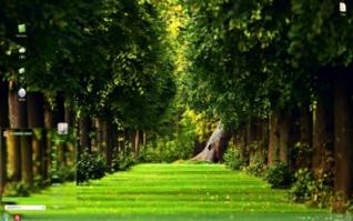 绿色树林win7主题