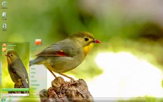 红嘴相思鸟可爱主题