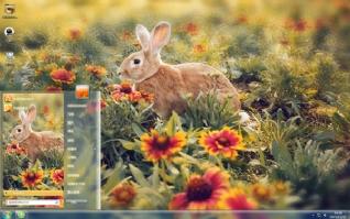 动物小兔子可爱主题
