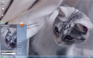 发呆小猫咪可爱主题
