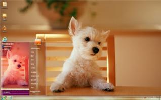 狗狗帅气坐姿桌面主题
