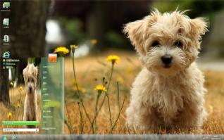 可爱萌宠狗狗主题