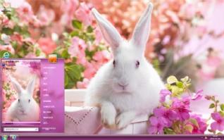 花园小白兔可爱主题