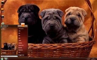 可爱沙皮犬桌面主题