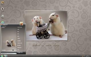 仓鼠夫妇可爱主题