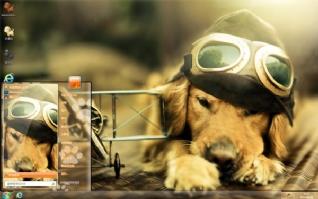 金毛犬飞行员可爱主题