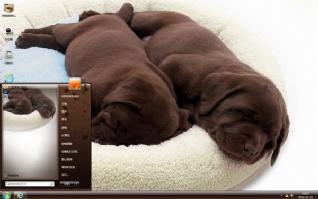 狗狗午睡可爱主题