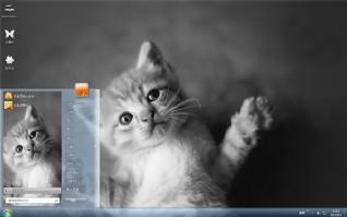 可爱萌萌的猫咪主题