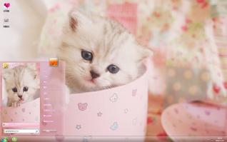 可爱小猫呆萌主题