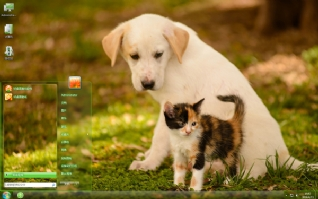 猫咪狗狗可爱主题