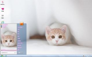 萌宠小猫咪可爱主题