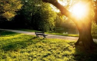 自然静谧之美风景桌面壁纸高清