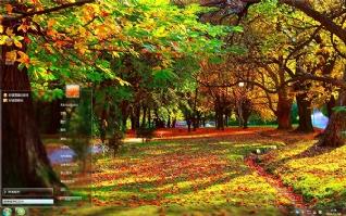 秋季森林风景win7主题