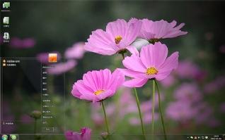 唯美粉色花朵win7主题
