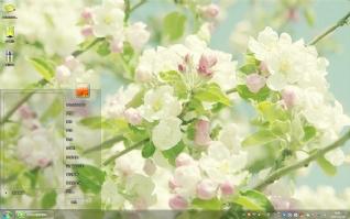 清新白色花朵win7主题