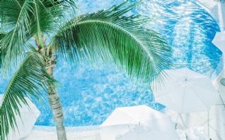 夏日清新泳池风景壁纸